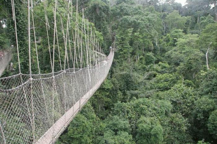 Мосты по которым страшно ходить (35 фото)