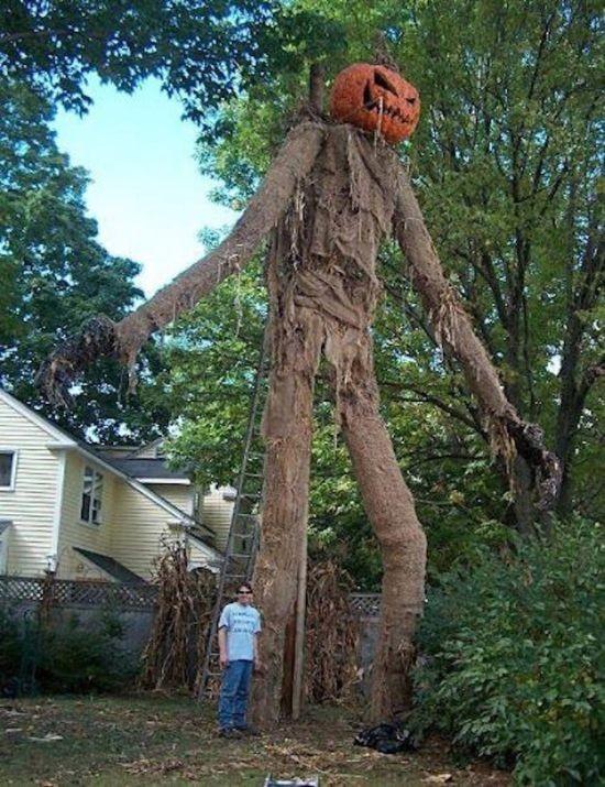 Различные декорации на Хэллоуин (13 фото)