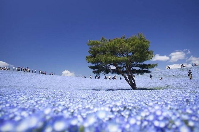 Красивейшие места голубой планеты