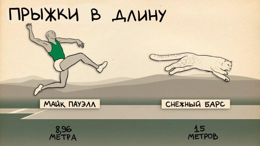 Изготовление памятников в Белгороде