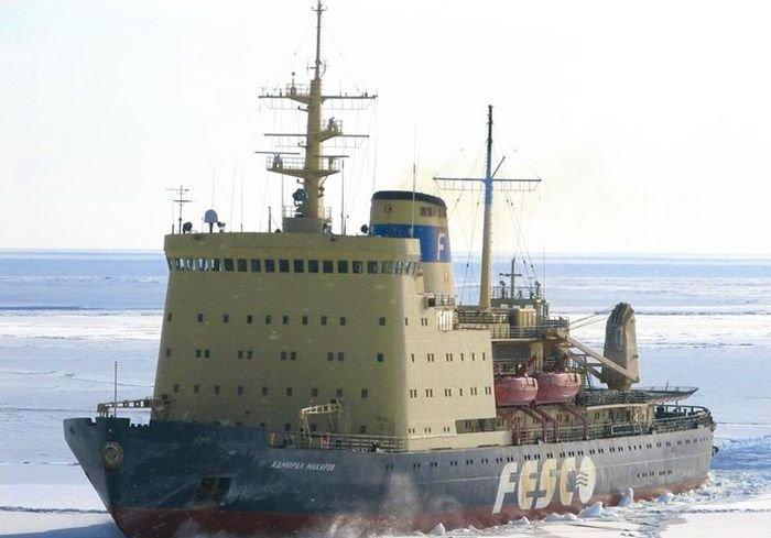История спасения китов, объединившая непримиримых соперников (5 фото)