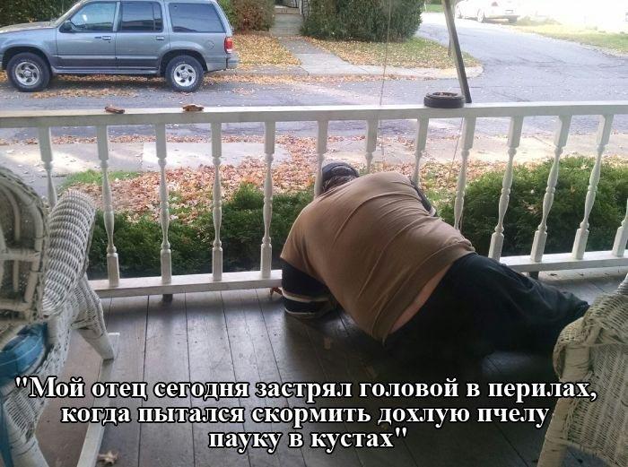 Подборка прикольных картинок (51 фото)