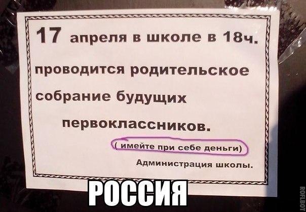 Смешные фото с надписями (42 фото)
