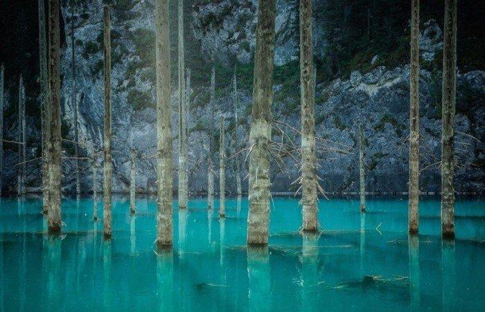 Красивые фото живой природы за октябрь от National Geographic (20 фото)