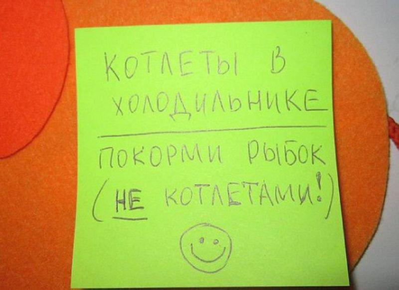 Смешные записки на холодильнике (13 фото)