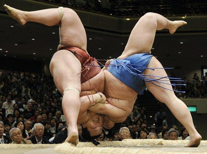 Интересные факты о борьбе сумо