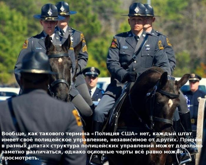 10 интересных фактов о полиции США