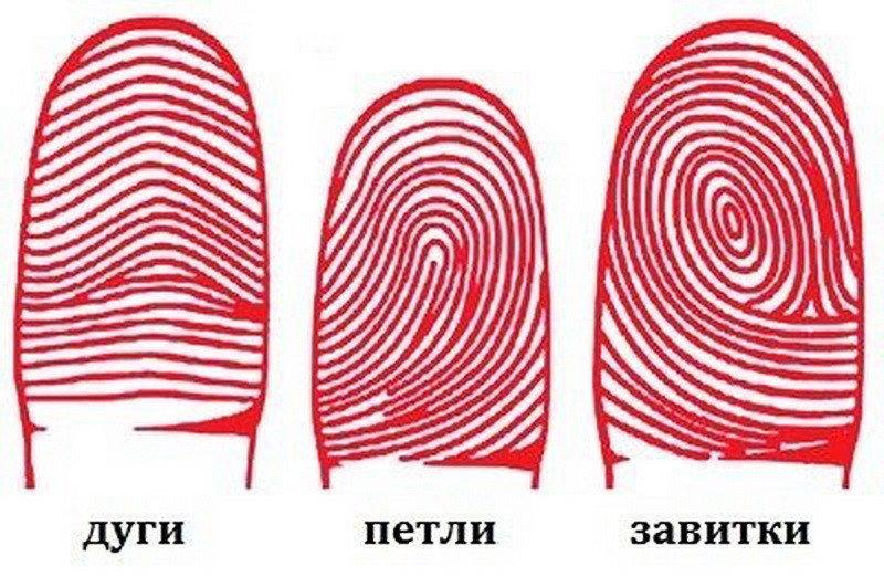 Ваш характер по подушечкам пальцев