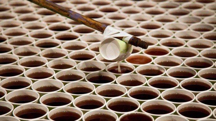 Гигантская мозаика из пластиковых стаканчиков (4 фото + видео)