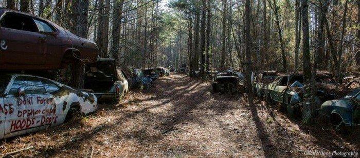 Кладбище автомобилей (19 фото)