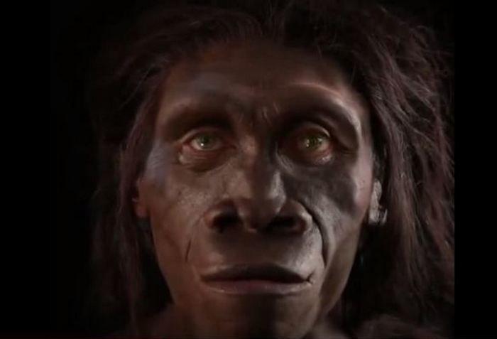 Как изменялось лицо человека: 6 миллионов лет за 1 минуту
