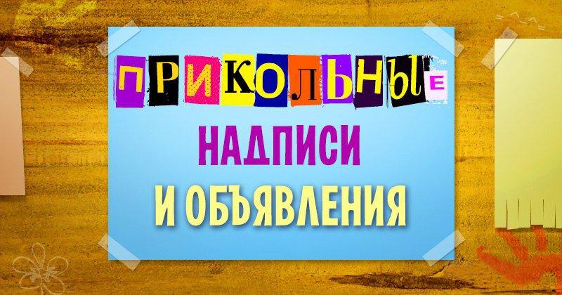 Смешные надписи и объявления (15 фото)