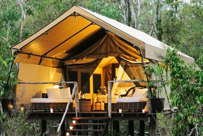 Необычные туристические палатки