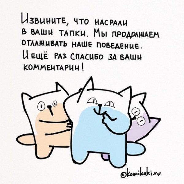 Комиксы о нашей жизни
