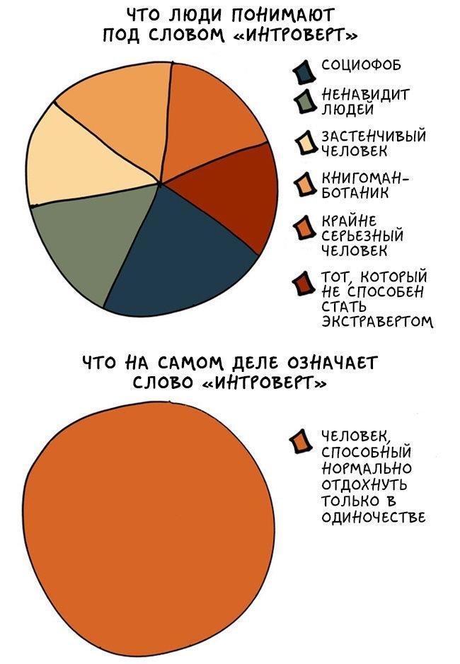 Познавательные графики о мире интровертов (17 картинок)