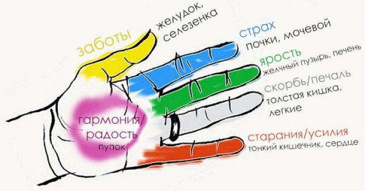 Как улучшить состояние определенных органов тела