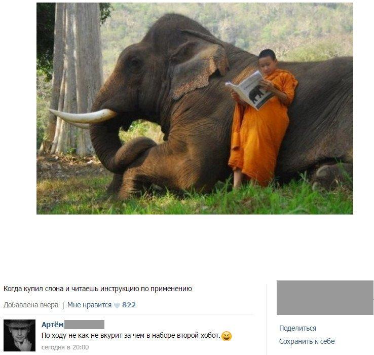 Забавные комментарии и высказывания из социальных сетей (30 фото)