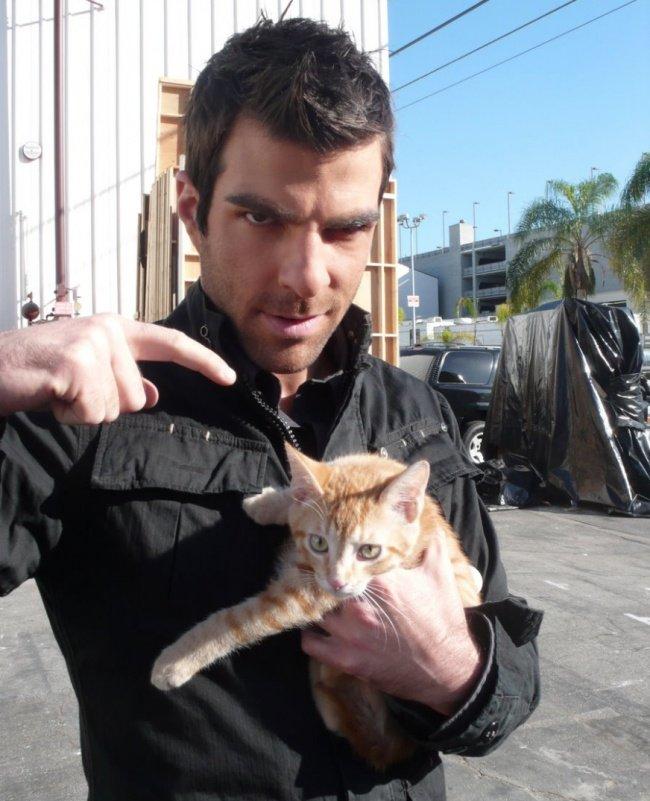 Сильные и независимые мужчины со своими котиками