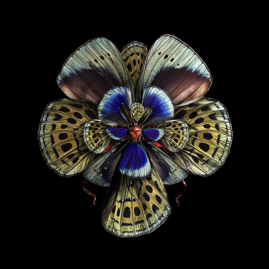 Цветы из крыльев бабочек