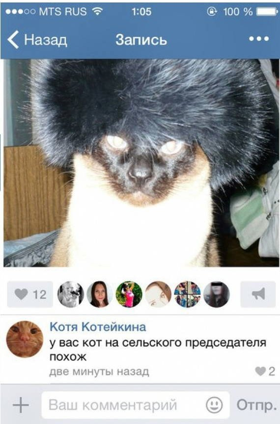 Забавные комментарии и высказывания из социальных сетей (31 фото)