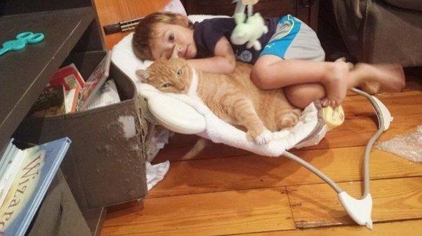 Кот стал опекуном мальчика