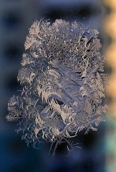 Удивительные зимние рисунки