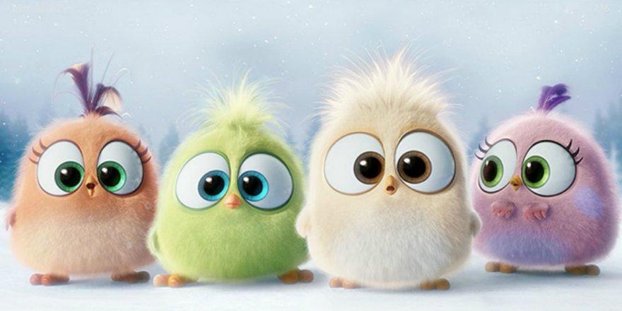 Поздравление с наступающим Новым годом от Angry Birds