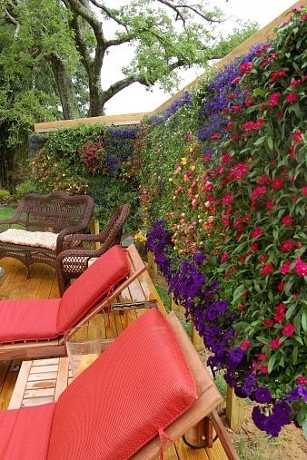 Интересные вертикальные сады и клумбы