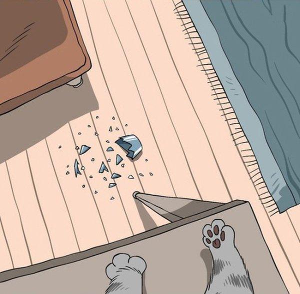 Мир котов в картинках (11 картинок)