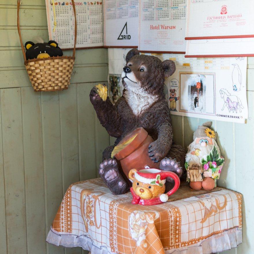 Выращивание медведей в России