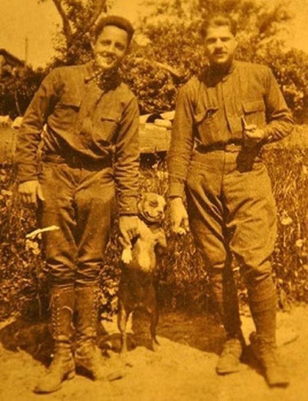 Героический пес Первой мировой войны