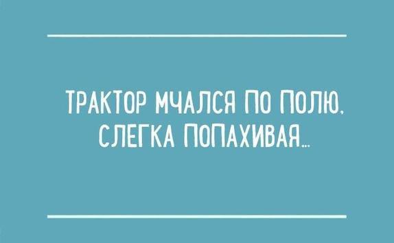 Из школьных сочинений...