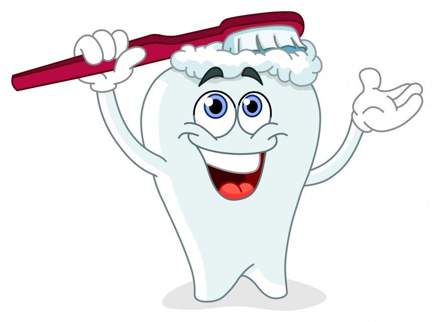 Вместо протезов будут выращивать новые зубы