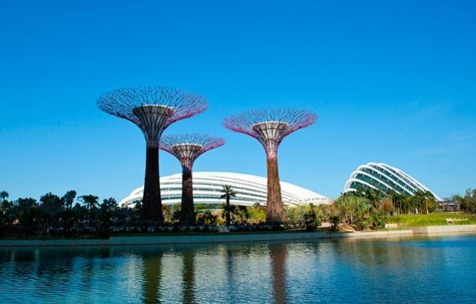 Cады в Сингапуре