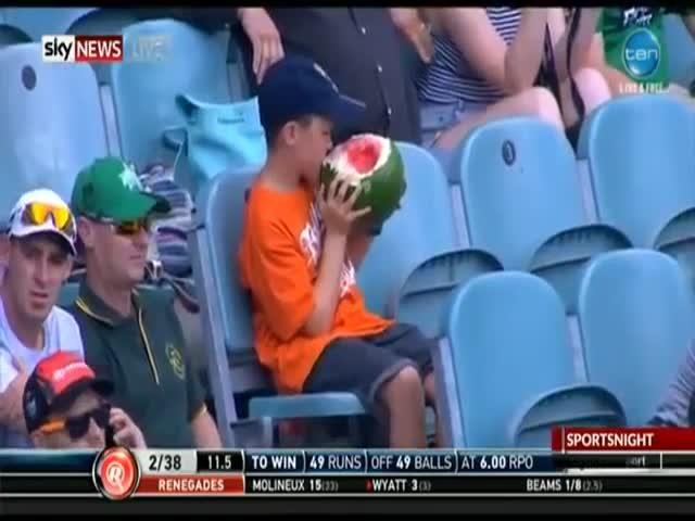 Видео на котором мальчик необычно ест арбуз