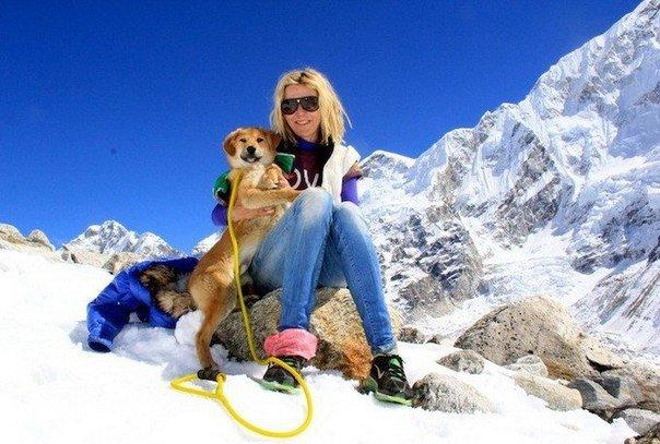 Первая в мире собака покорившая Эверест