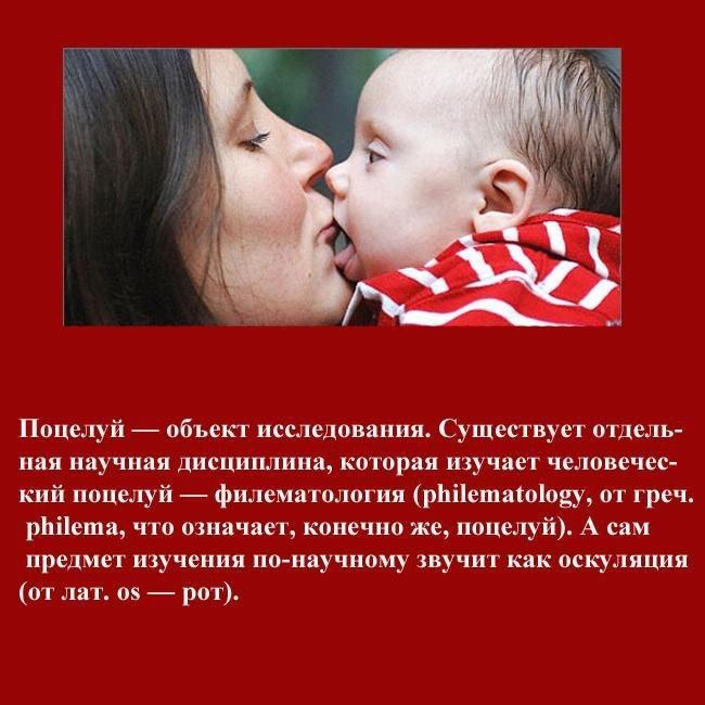 40 интересных фактов о поцелуях