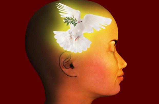 О клинической смерти с научной точки зрения (11 фото)