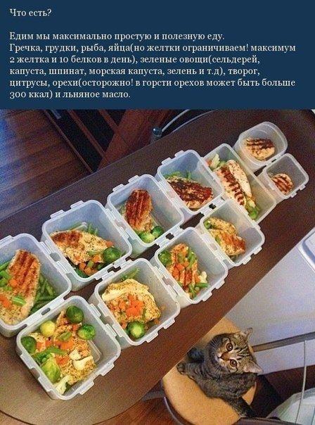 Несколько простых правил питания
