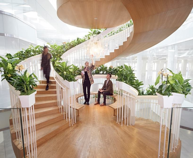 Необычная «живая лестница»