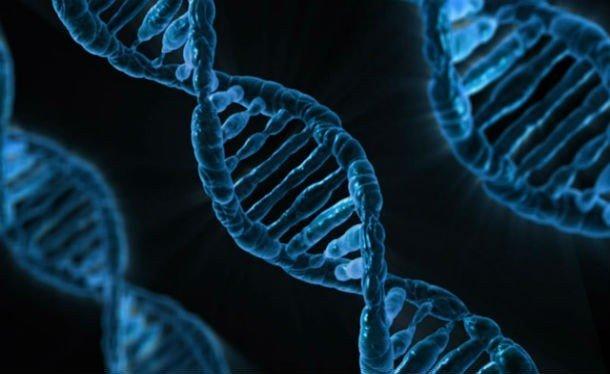 Занимательные факты про ДНК, которые вы могли не знать