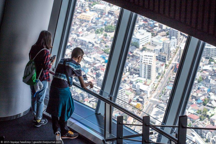 Токио и самая высокая в мире телебашня