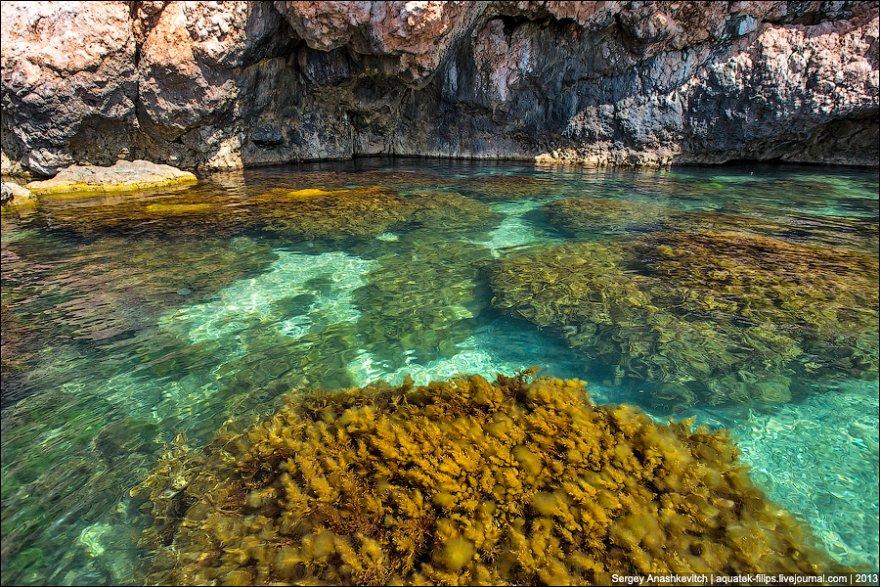 Природа в Крыму