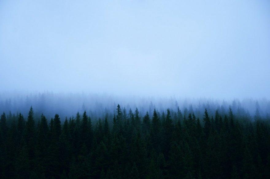 Необыкновенные атмосферные фотографии для настоящих ценителей минимализма