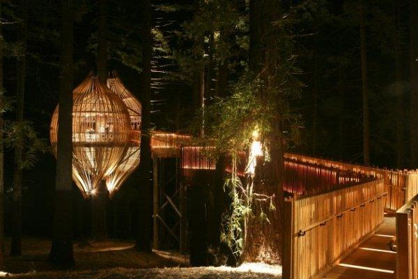 Необычный ресторан на дереве Yellow Treehouse (17 фото)