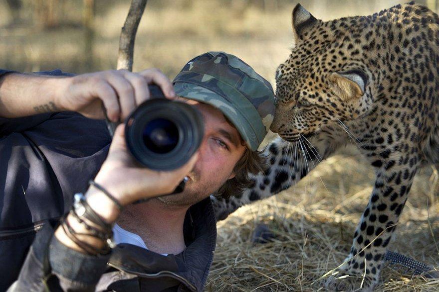 О работе фотографа в тесном контакте с животным миром