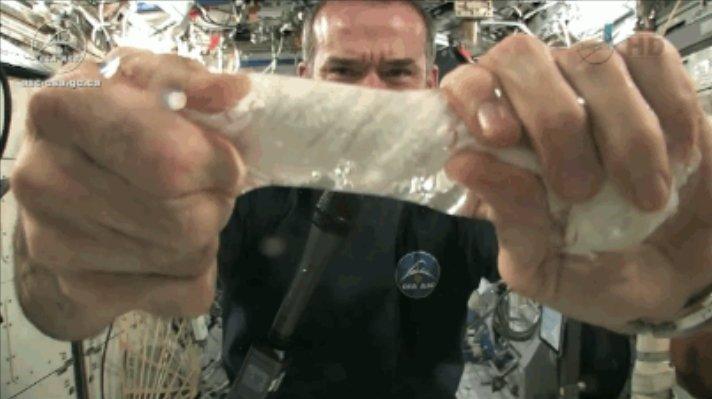 Самые интересные факты о жизни астронавтов в космосе