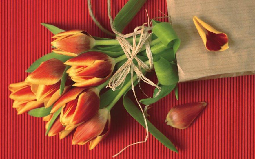 Как удивить любимую в праздник 8 марта