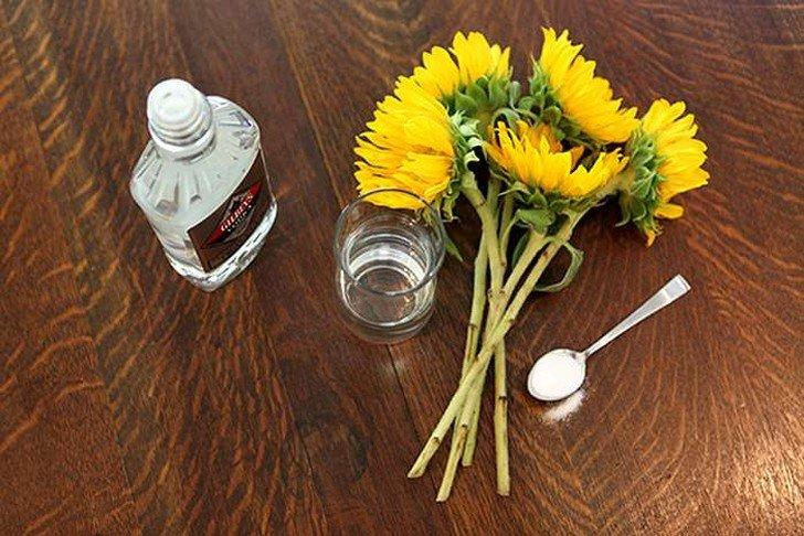 Самые необычные, но эффективные способы использования водки