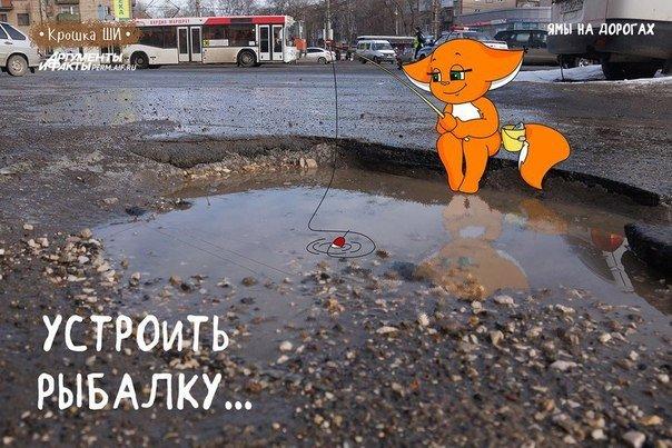 Рекомендации от Крошки Ши: что делать с ямами на дорогах